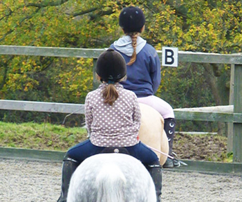 We cater for all riding abilities